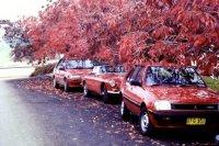 leura-autumn